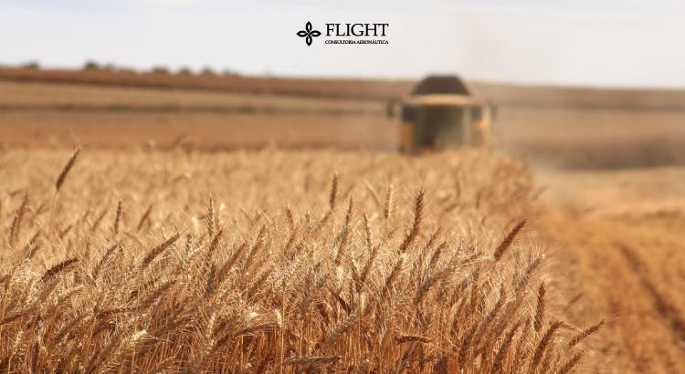 Agronegócio: aeromodelos otimizam a manutenção da lavoura.