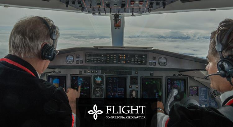 Os dois ficam na cabine de comando do avião, mas possuem funções específicas e complementares - você sabia?